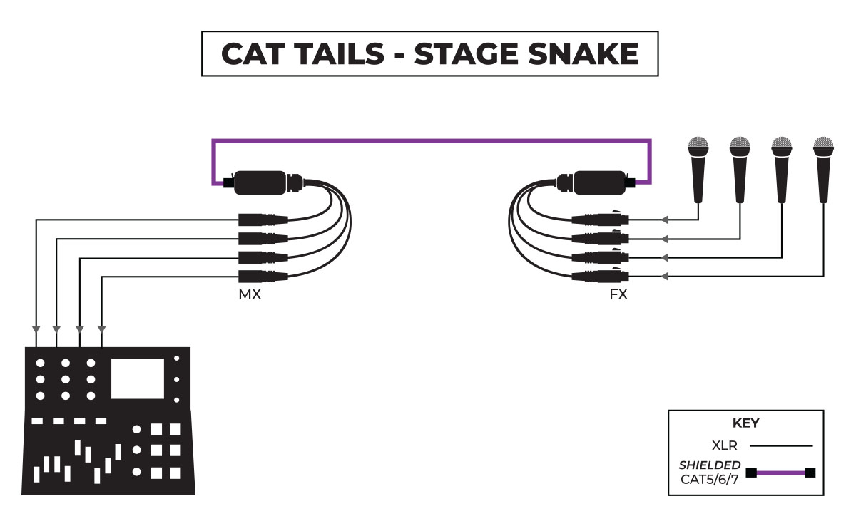 CAT Tails Stage Snake Application